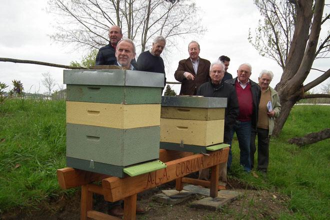 """Programa do Día do Apicultor: """"Salvar as abellas, salvar a apicultura"""""""