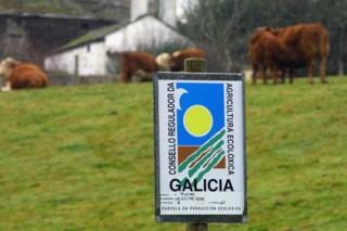 A Consellería espera aprobar este ano o Plan Estratéxico da Agricultura Ecolóxica