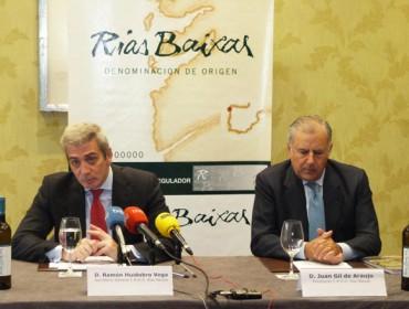 Las ventas de vinos de Rías Baixas crecieron un 9,3% en 2017