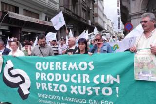 O SLG valora levar a cabo accións de protesta en demanda duns prezos xustos para o leite