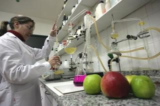 Xornada sobre mellora de análises microbiolóxicas na industria alimentaria