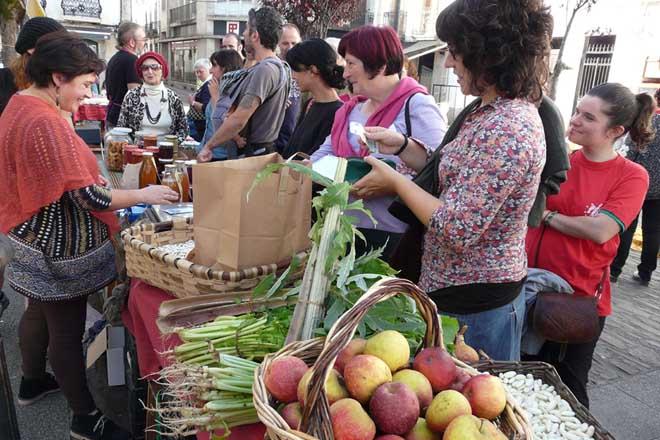 El Parlamento acuerda diseñar un plan de impulso a la huerta y a la fruticultura