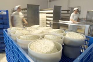 Curso sobre queixos de pasta branda na Aula de Produtos Lácteos