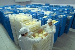 España recupera mercado para su leche