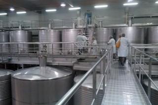 Aprobada a norma para envasar viños galegos co selo de 'Produción Integrada'