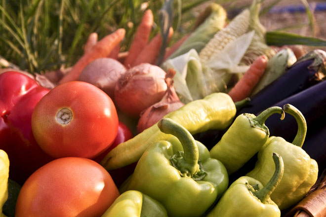 Leite e carne, os alimentos que conteñen menos residuos de pesticidas