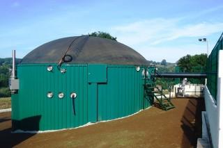Ayudas para proyectos de energías renovables en explotaciones ganaderas,  agrícolas y forestales