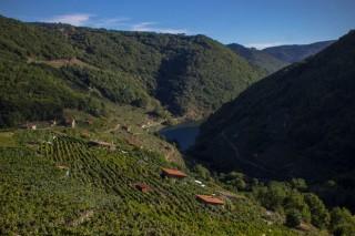 Éxito da D.O. Ribeira Sacra con 13 melladas no Concurso Mundial de Viños Extremos 2018