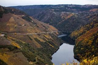 Una tesis prevé que las zonas altas serán las más aptas para el cultivo del vino en la Ribeira Sacra