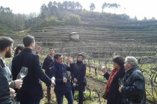Reconocidos prescriptores de vino visitan O Ribeiro