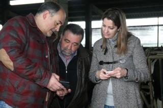 Africor desenvolve a primeira APP de España para consultar a produción láctea