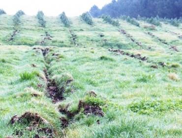 Advirten da degradación dos solos agrarios e fértiles de Galicia