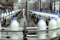 As industrias recurren a normativa do paquete lácteo