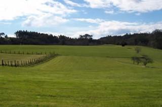 Aprobada a Lei de Mellora da Estrutura Agraria de Galicia