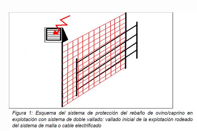 proteccion_ataque_lobo_01_standar