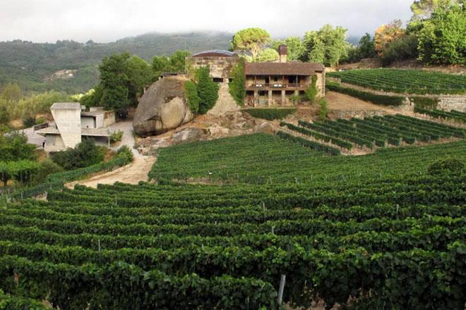 Fortalezas e debilidades do enoturismo na provincia de Ourense