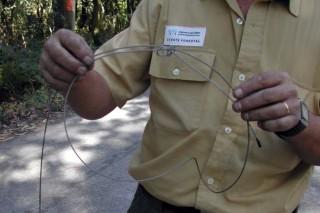Os axentes forestais perden autoridade no proxecto da Ley de Montes