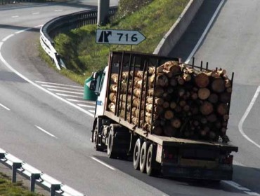 La industria forestal pide autorizar más carga en camiones de talas