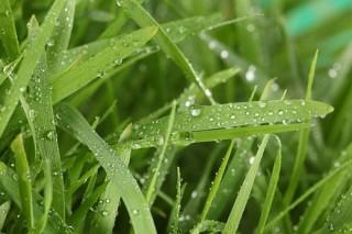 En maio choveu na provincia deLugoata a metade dun mes normal