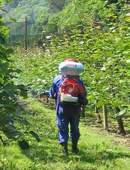 Quince enfermidades profesionais no agro galego