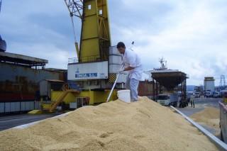 Garantizado el suministro de pienso para todas las granjas gallegas
