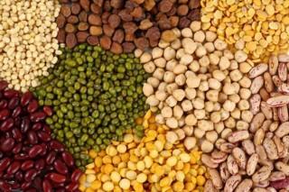 O Día Mundial do Solo destaca a importancia dos legumes