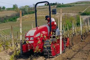 tractor_cadeas_viña_02_standar