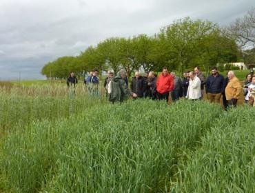 O CIAM presenta os múltiples proxectos nos que traballa para mellorar a competitividade do agro galego