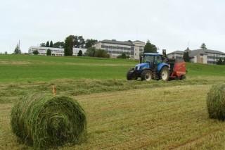 Evolución da calidade dos ensilados de herba nas explotacións galegas
