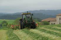 O Consello de Agricultura da UE analiza a reforma do 'greening'