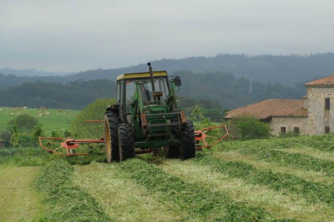 El Consejo de Agricultura de la UE analiza la reforma del 'greening'