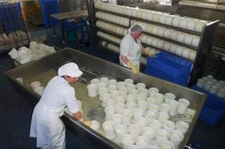 Queinaga, un exemplo de darlle valor ao leite na explotación