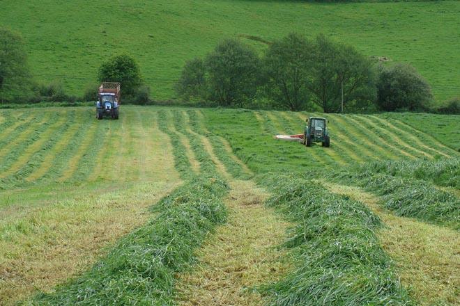 Agricultor xenuíno: quen poderá cobrar a próxima PAC?