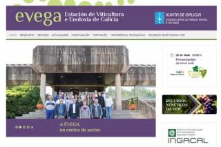 A Estación de Viticultura e Enoloxía de Galicia inaugura páxina web