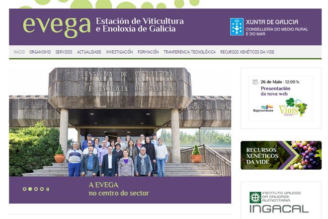 EVEGA_WEB_standar