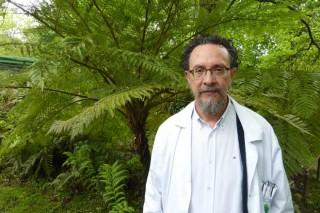 """""""É moi complicado atopar planta con garantía sanitaria tanto en Galicia como en España"""""""