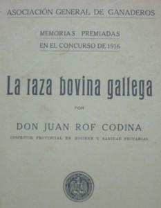 Raza Rubia Galega