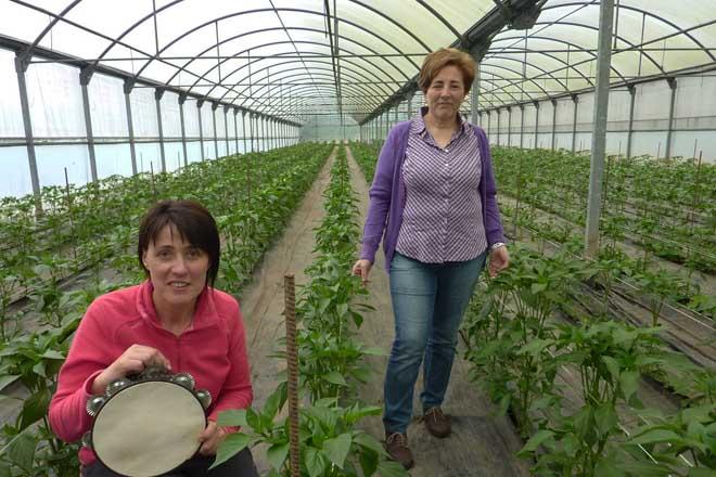 Amarelante y A Pementeira galardonadas con los Premios Agader 2019 al desarrollo rural