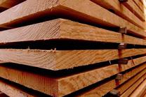 Empresarios de Confemadera Galicia visitan industrias da madeira e da celulosa de Brasil