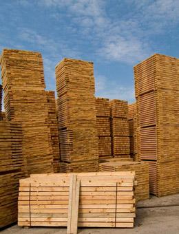 Os propietarios forestais aprecian unha mellora do consumo en madeira de trituración