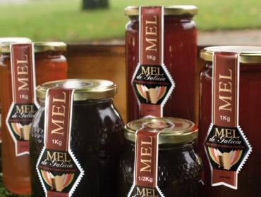 Os probióticos no mel natural: ¿unha fonte de saúde?
