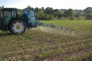 Herbicida aplicado en post-emerxencia.