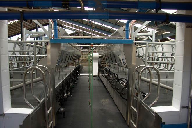 Control da bacterioloxía do leite