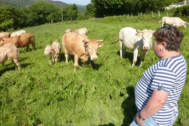 Enquisa a gandeiros e agricultores sobre como lles afecta o coronavirus na súa actividade