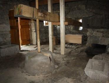 O patrimonio apícola cereiro en Galicia