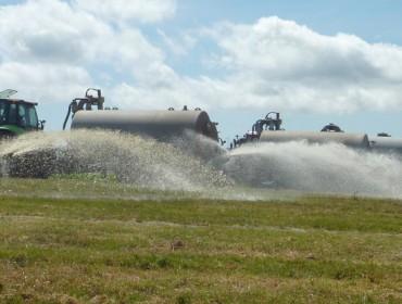 Ganaderos de laOPLvierten miles de litros de leche ante la decisión de la industria de no recogérsela