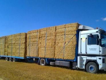 Baja la cosecha de cereales y se encarece la paja para el ganado