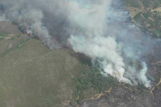 Medio Rural sancionará tras un lume terreos sen rozar e repoboacións ilegais