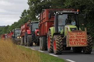Francia aproba un plan de urxencia para o sector gandeiro con 600 millóns