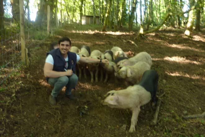 Los comienzos de una explotación de Porco Celta